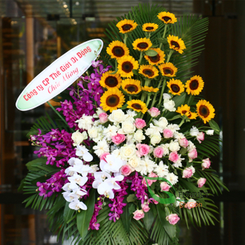 Free delivery Opening Congratulations flowers Vietnam