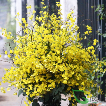 Flower shop online free shipping in Saigon VN
