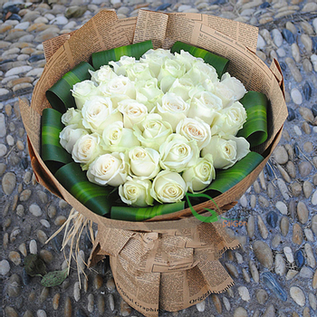 White roses delivery mightylinksfo