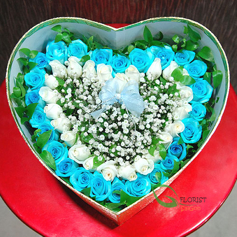 Box of blue roses
