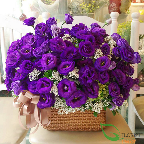 Buy purple flowers in Saigon online