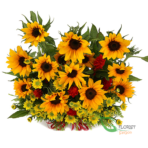 good morning saigon with sunflowers basket
